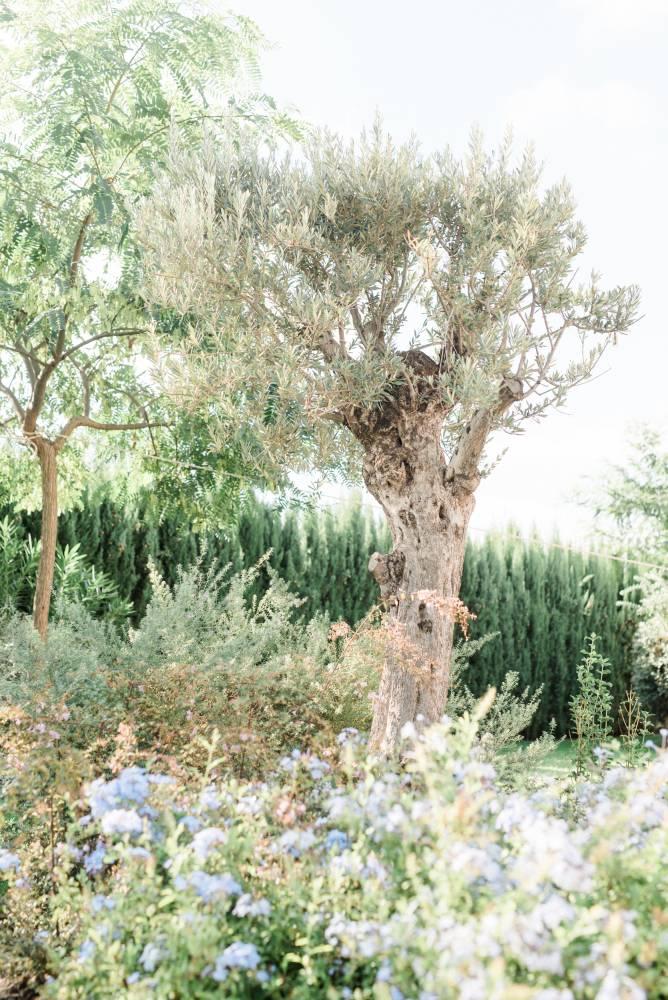 61-YouriClaessensPhotography-Ibiza-40-of-48